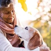 pet therapy patrizia marzola