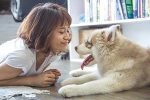 Pet Therapy Patrizia Marola Psicologa  Fidenza