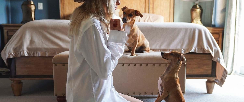 Il beneficio della relazione con il cane